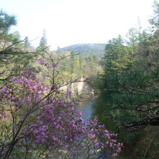 Река Милоградовка. фото Ю. Берсенева
